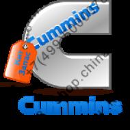 Cummins (Каменс)